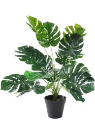 Kunstplant «Monstera», bpc living